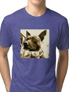 Staffie Tri-blend T-Shirt