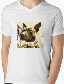 Staffie Mens V-Neck T-Shirt