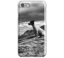 Super dog iPhone Case/Skin
