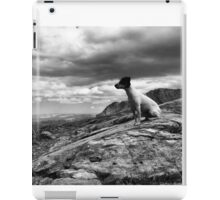 Super dog iPad Case/Skin