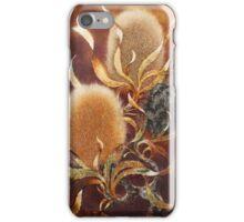 golden banksia iPhone Case/Skin