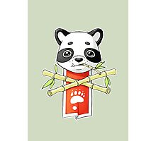 Panda Banner Photographic Print