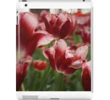 Red & White Tulips iPad Case/Skin