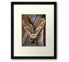 Ghost Owl  in flight colored pencils drawing Framed Print