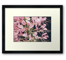 The Color of Romance Framed Print