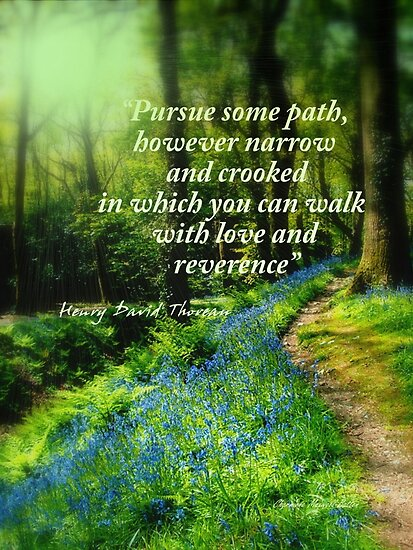 The Pathway by Charmiene Maxwell-batten
