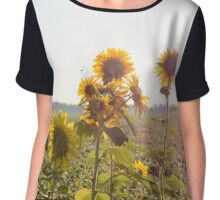 sunflower  Chiffon Top