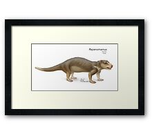 Repenomamus Framed Print