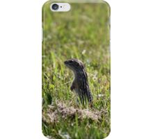 Squinny...blink and you miss them! iPhone Case/Skin