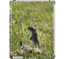 Squinny...blink and you miss them! iPad Case/Skin