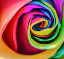 Beatiful Colorful Rainbow Rose Sticker
