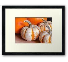 Pumpkins 9 Framed Print