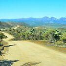 Distant Flinders Ranges Vista by George Petrovsky