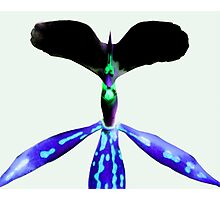 Spike - Orchid Alien Discovery Photographic Print
