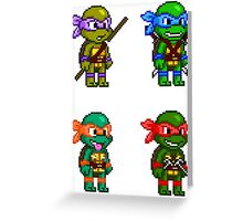 Teenage Mutant Ninja Turtles Pixels Greeting Card