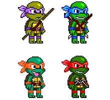 Teenage Mutant Ninja Turtles Pixels Photographic Print