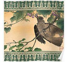 Japanese Bird Eating Grapes Poster