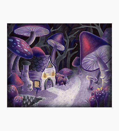 Mushroom Wonderland Photographic Print