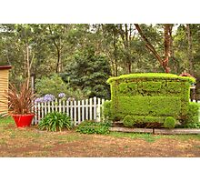 Station Topiary Photographic Print
