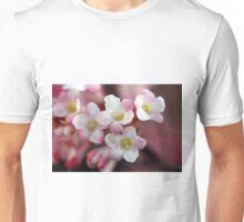 Winterblüte Unisex T-Shirt