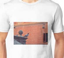 Pigeon observing the city  Unisex T-Shirt