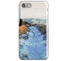 Snow Path iPhone Case/Skin
