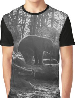 Little Elephant Black And White Photography #redbubble #decor Graphic T-Shirt
