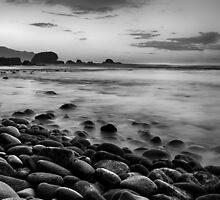Paradise Remains by Diogo Pereira