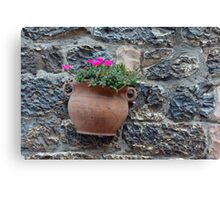 Pot of flowers on a stone wall Canvas Print