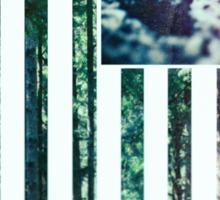 USA Wilderness Sticker