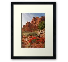 Paintbrush in Arches Framed Print