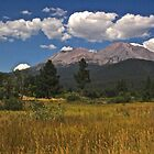 Mountain and Meadow by Barbara  Brown