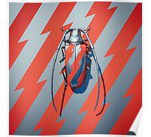 Bug I Poster