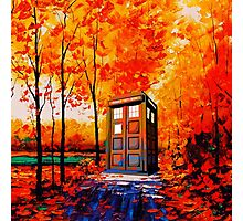 tardis in the woods Photographic Print
