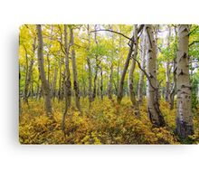 Golden Forest Bed Canvas Print