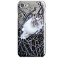 Sophia in her nest iPhone Case/Skin