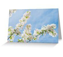 Frühlings Tage Greeting Card
