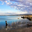 Port Augusta - Old Barge by Georgie Sharp