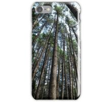Tall pine trees in a forest art photo print iPhone Case/Skin