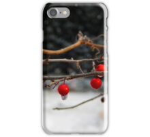Frozen Holly Berries iPhone Case/Skin