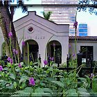 Woman's Club Fort Lauderdale by GolemAura