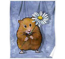 Hamster Holding Daisy Flower, Original Art Poster
