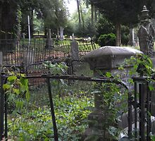 Cemetery Gates by IveyRose