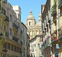 Segovia, Spain - Cathedral Street view by Michelle Falcony