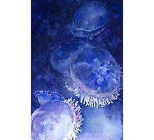 Watercolor Moon Jellyfish at the Seattle Aquarium Photographic Print