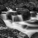 Aqua Mystic  by Mark  Lucey
