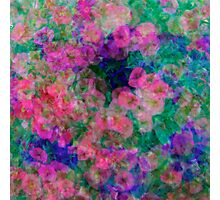 Floral Profusion Photographic Print