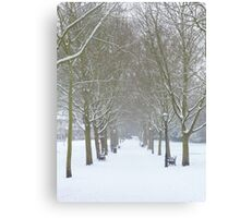 Winter Snowy Trees in Rochester - Kent Canvas Print