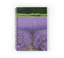 Lavender Fields - Kent Spiral Notebook