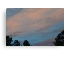 Cotton Sky Canvas Print